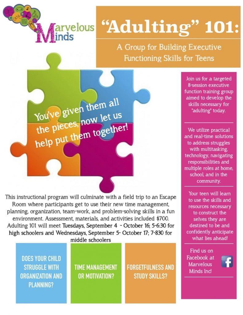 Executive Function Program